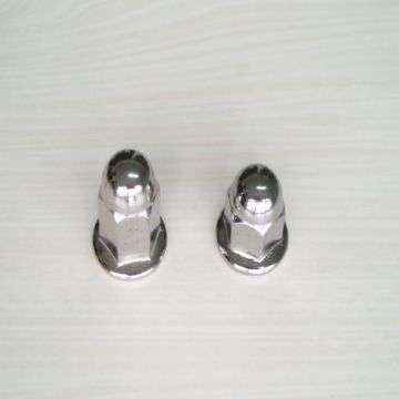 Hexagon Flange Cap Nut Manufacturers