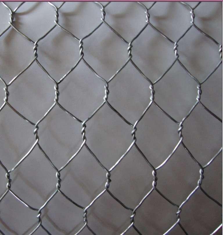 Hexagonal Netting Hot Dipped Manufacturers