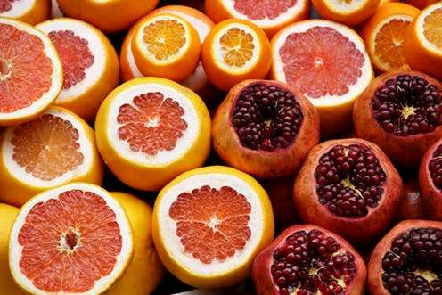 High Antioxidant Fruit Manufacturers