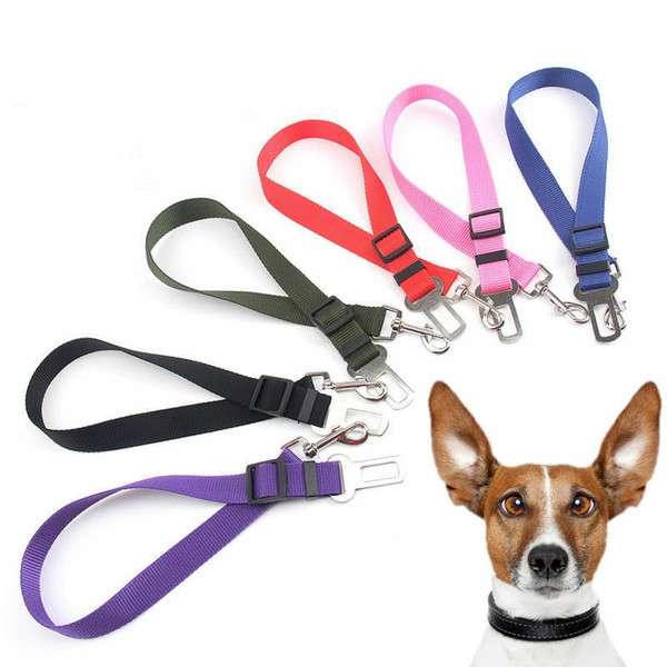 Safety Dog Belt Manufacturers