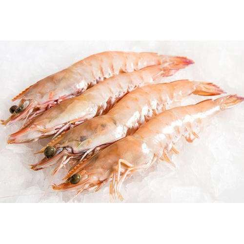 Seafood Shrimp Prawn Manufacturers