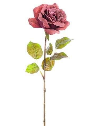 丝玫瑰茎 制造商