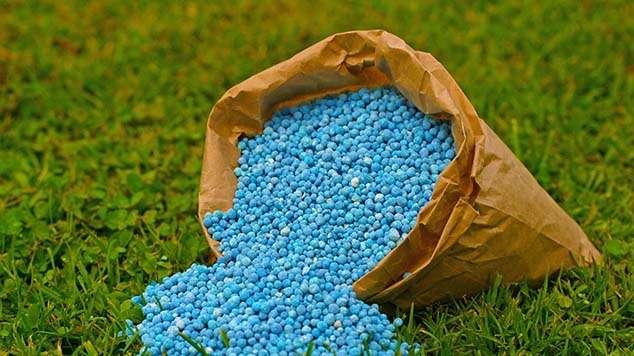 固体植物肥料 制造商