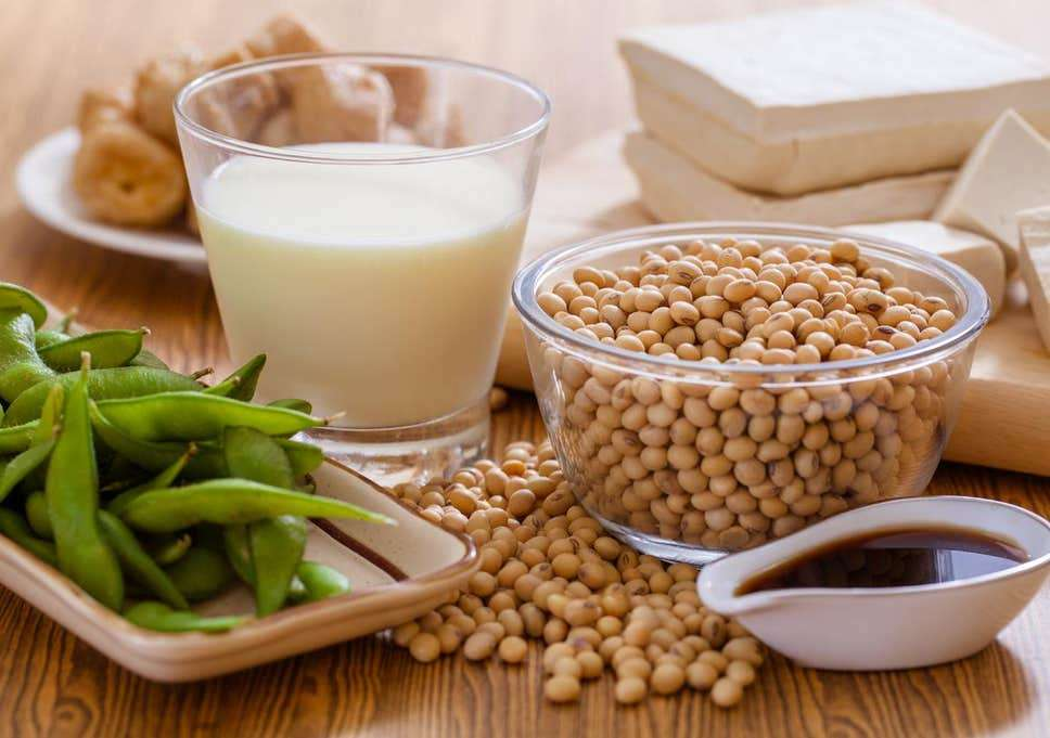 Soy Milk Processed Food Manufacturers