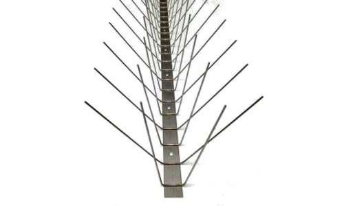 不锈钢鸟钉 制造商