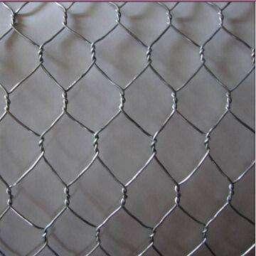Stainless Steel Chicken Wire Manufacturers