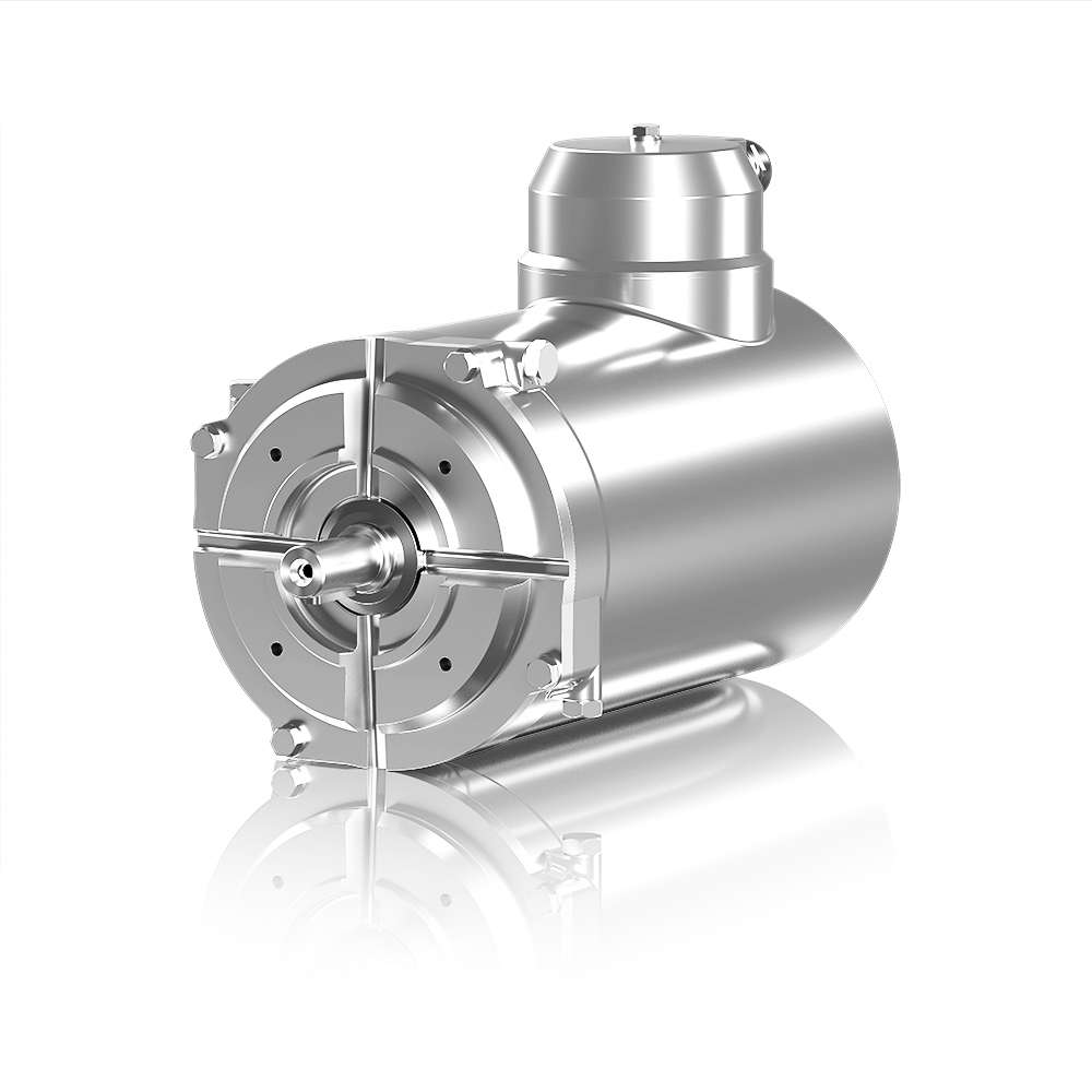 Stainless Steel Motor Manufacturers