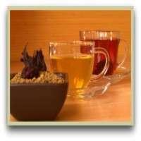 胡芦巴茶 制造商