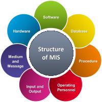 Management Information System Manufacturers