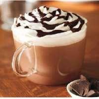 热巧克力预混料 制造商