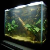Aquarium Sand Manufacturers