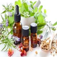 Anti Bacterial Essential Oils Manufacturers