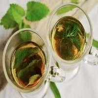 绿色清凉茶 制造商