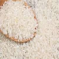大米淀粉 制造商