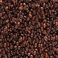 咖啡豆 制造商