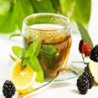 美食茶 制造商