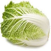 白菜 制造商