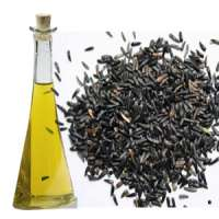 Niger Seed Oil Manufacturers