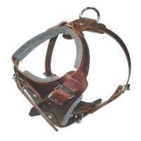 Leather Dog Harness Manufacturers