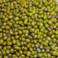 Green Moong Manufacturers