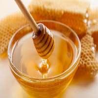 天然蜂蜜 制造商