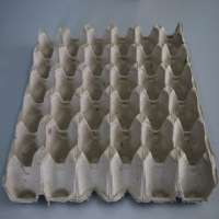 Pulp Egg Tray Manufacturers