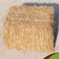 麦秸 制造商