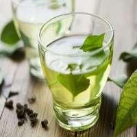 绿茶饮料 制造商
