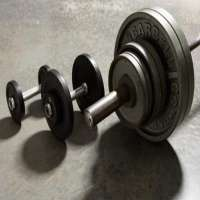 Free Weights Manufacturers