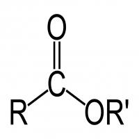 羧酸 制造商