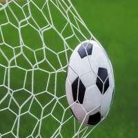 足球球和目标 制造商