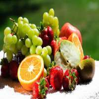 Fresh Fruits Manufacturers