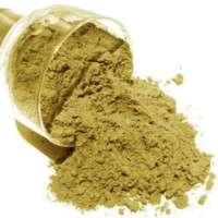 绿咖啡粉 制造商