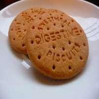 消化饼干 制造商