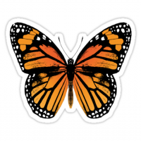 Butterfly Sticker Manufacturers