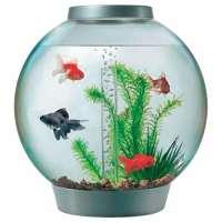 Aquarium Bowl Manufacturers