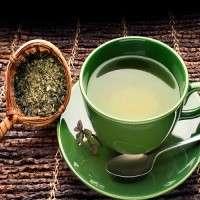 绿茶 制造商