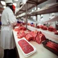 Meat Processor Manufacturers