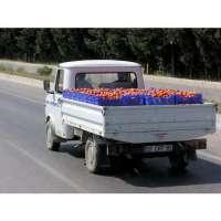 蔬菜运输服务 制造商