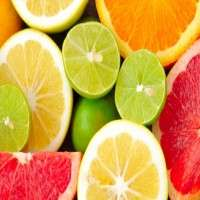 水果提取物 制造商