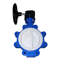 PTFE Butterfly Valves Manufacturers