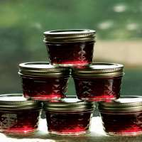Blackberry Preserves Manufacturers