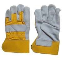 Canadian Glove Importers