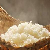 Glutinous Rice Manufacturers