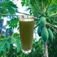 番瓜树萃取物 制造商