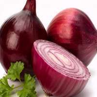Red Onion Manufacturers