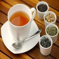 茶 制造商