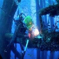 离岸潜水服务 制造商