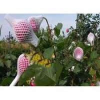 Flower Bud Net Manufacturers