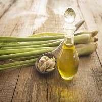 Lemongrass Oil Manufacturers